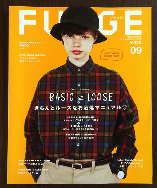 ffudge9.jpg
